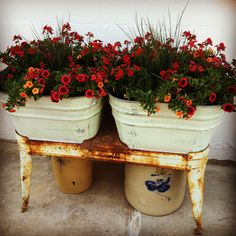 Washtub planter. @Sarah Therese Wing Stoneware by Spompinato & Co. @Andrea / FICTILIS Lustgraaf
