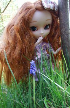Séance photo dans le jardin ...