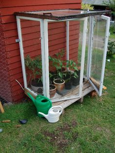 Mini greenhouse made out of old windows!