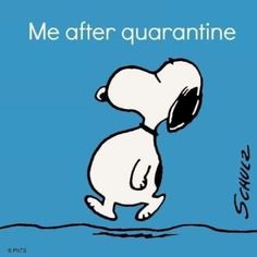 Images Snoopy, Snoopy Pictures, Funny Pictures, Sports Pictures, Funny Pics, Easter Pictures, School Pictures, Snoopy Love, Snoopy And Woodstock