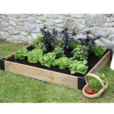 Odlingslåda - Odla dina egna grönsaker utan...