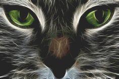 cat fractal cross stitch