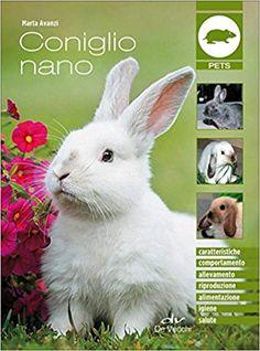 dieta scherzosa sul coniglio