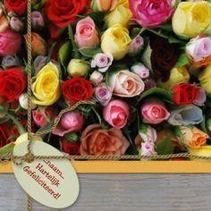 verjaardagskaart met rozen - Google zoeken