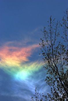 Image by Dehk - 20 Nacreous Clouds & Fire Rainbow Pictures - Natural Phenomena Fire Rainbow, Rainbow Cloud, Rainbow In The Sky, Rainbow Pride, Beautiful Sky, Beautiful World, Pretty Sky, Naturally Beautiful, Simply Beautiful