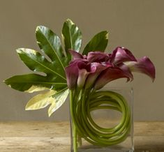 Excellent Free of Charge Calla Lily ikebana Concepts Calla lilies will be the essential aroma flower. The bulbs with this Camera flower usually are named Arte Floral, Deco Floral, Arrangements Ikebana, Modern Flower Arrangements, Calla Lily Centerpieces, Calla Lillies, Lilies Flowers, Flowers Vase, Hydrangea Flower