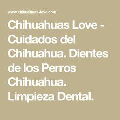 Chihuahuas Love - Cuidados del Chihuahua. Dientes de los Perros Chihuahua. Limpieza Dental.