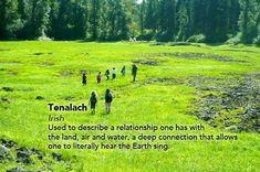 Tenalach, Irish word used to describe a relationship one has with the land, air and water, a deep connection that allows one to literally hear the earth sing.