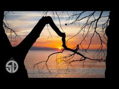 Stive Morgan - Wandering Soul - YouTube Jean Michel Jarre, Meditation, My Favorite Music, Mother Nature, My Music, Places To Visit, Songs, Youtube, Wanderlust
