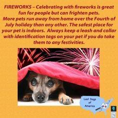 Fireworks and Dogs #PetSafety #Illinois #LostDogs #IndependenceDay #FourthofJuly