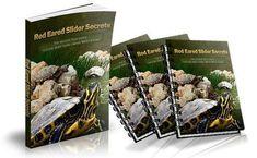 Red Eared Slider Secrets PDF Book Free Download