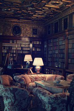 Dark, cozy library