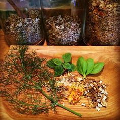 delicious herbs for dogs!