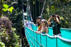 Ver las atracciones en Costa Rica. ¡Qué bella! Hay muchos los pájaros.
