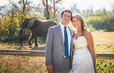 nashville zoo, after wedding photos, joe hendricks photography, #nashvilleweddings