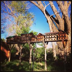 Bird houses in the yard at the Mabel Dodge Luhan house, Taos. New Mexico Santa Fe, Taos New Mexico, Mabel Dodge Luhan, Santa Fe Decor, Albuquerque News, Conquistador, Historic Homes, Bird Houses, The Help