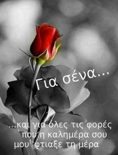 Καλημέρα Happy Morning, Good Morning Good Night, Good Morning Quotes, Picture Quotes, Love Quotes, Funny Quotes, Inspirational Quotes, Biblical Verses, Romantic Mood