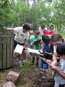 Summer Science Campers use the scientific method in outdoor field investigations.