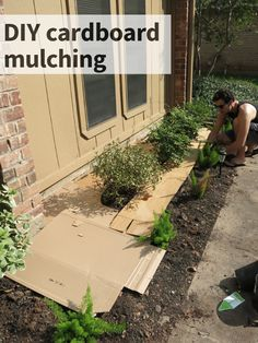"""Yard is Hard, Part III DIY Cardboard Mulching is part of Backyard landscaping designs - I reeeeeally wanted to title this post """"So Mulch Fun"""" but the cardboard technique we used here was too important to leave out of the… Mulch Landscaping, Landscaping Ideas, Inexpensive Landscaping, Mailbox Landscaping, Backyard Ideas, Mulch Yard, Garden Mulch, Pool Ideas, Outdoor Ideas"""