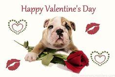 valentine_doggie_01