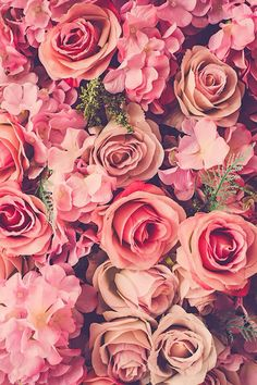 Imagem de rose, flowers, and pink iPhone wallpaper