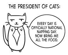 Yes, Mr. President
