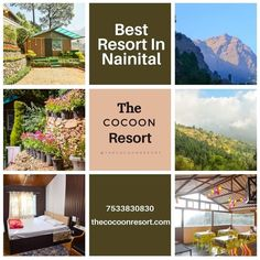 Welcome To The The Cocoon Resort In Pangot, Nainital. #BestHotelInNainital #BestHotel #BestResort #Nainital #TheCocoonResort #UttrakhandTourism #Pangot #contactus Nainital, Best Resorts, Camps, Nature, Naturaleza, Nature Illustration, Off Grid, Natural