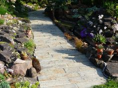 Sidewalk, Terrace, Architectural Materials, Lawn And Garden, Pavement, Curb Appeal