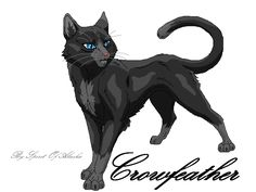 Next contest:Draw Crowfeather! (Rules:1.can be with other cats, 2.no blood, 3. Does not have to be colored.) Due date: June 25th! If you have any more questions just ask in the comments below! Good luck! Have fun!