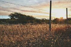 Sunset Litueche