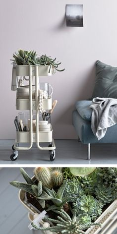 Trolleys make great gardening stations, but we like this take with an actual garden in the top shelf. It's just made with the help of a baking tray to protect the trolley and catch the water.