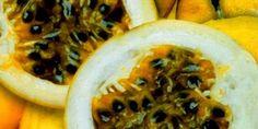 Maracujá - Passiflora incarnata