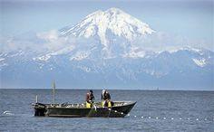 Mount Redoubt, The 3000 metre volcano, Alaska