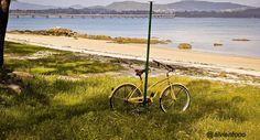 Disfruta de rutas en bicicletas
