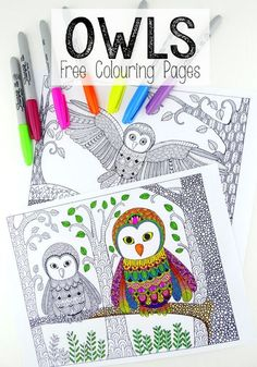 More free colouring pages for grown ups. These Owl colouring pages are simply stunning and will keep you busy right into Autumn!