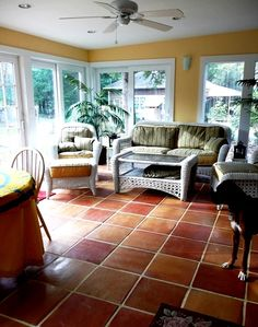 I am in love with this Saltillo Mexican Terra Cotta floor tile in this sunroom! The warm color scheme really makes you feel at home.