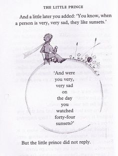 I LOVE THE LITTLE PRINCE! Probs one of my favorite books of all times!