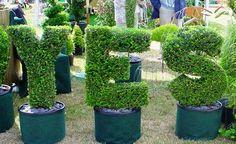 just say it  topiary logo