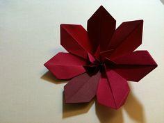 clematis flower step by eikosi, via Flickr                                                                                                                                                                                 Más