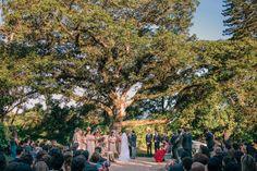 Casamento Paula e Walter - Palazzo di baco - Porto Alegre RS - Renan Radici Wedding Photography - 2015
