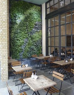 A Biotecture wall in Le Pain Quotidien, Westfield, London  Image: Biotecture Ltd