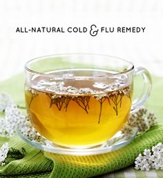 Make this immunity boosting, body soothing tea ahead of time and store in fridge. All you need are some herbs to naturally fight a cold or flu.