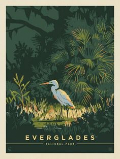 Anderson Design Group, Kenneth Crane, and a New Approach to National Park Poster Art Vogel Illustration, Travel Illustration, Vintage Illustration Art, Digital Illustration, All The Bright Places, Everglades National Park, Vintage Travel Posters, Retro Posters, Vintage Ski