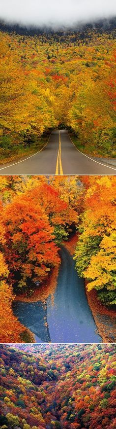 Autumn In Vermont. Some day I will go east to see the leaves change color in the fall. My dream trip!!!