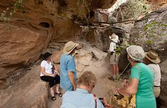 Visitors enjoy a guided bush walk at Cobbold Gorge, exploring surrounding areas with interpretive commentary by a Savannah Guide Savannah Chat, Exploring, Cruise, Track, Boat, Tours, Australia, Dinghy, Runway