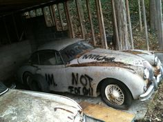 Jaguar XK - Not for sell, just to waste.