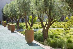 jardin-jardin-secret-marrakech-03.jpg 500×334 pixels