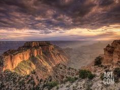 USA, Arizona, Grand Canyon National Park, North Rim, Cape Royale Photographic Print by Michele Falzone at Art.com