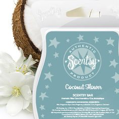 Coconut Flower   Scentsy fragrance