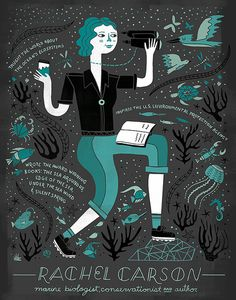 Women in Science: Rachel Carson by Rachelignotofsky on Etsy